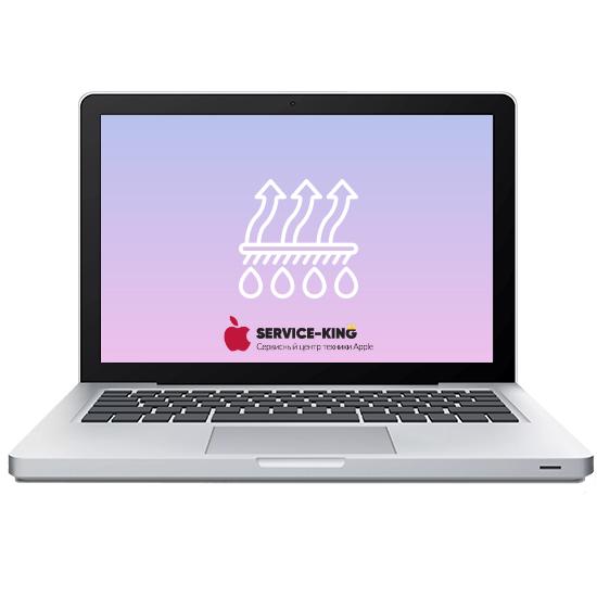 MacBook A1342/A1181 - Чистка от грязи и воды