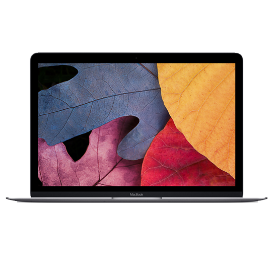 MacBook Retina 12 Синий экран